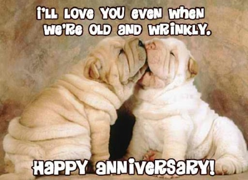 funny happy anniversary meme