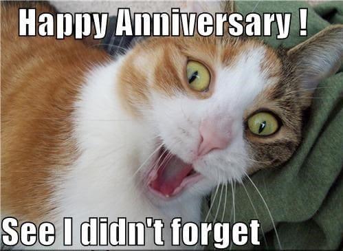 Happy Anniversary meme