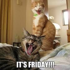 Positive Friday Meme